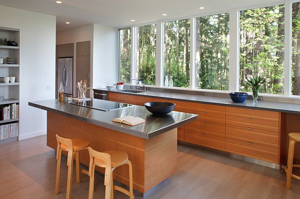 clean kitchen windows