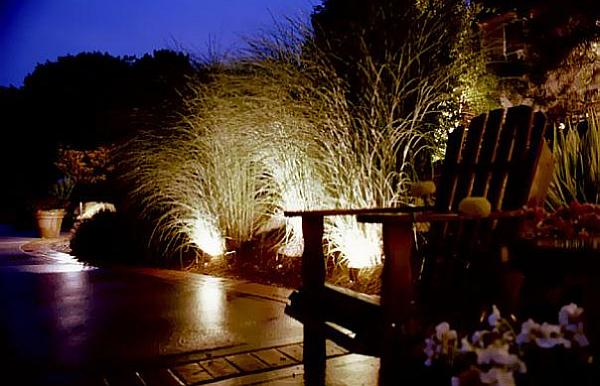 garden plant arrangements with lights