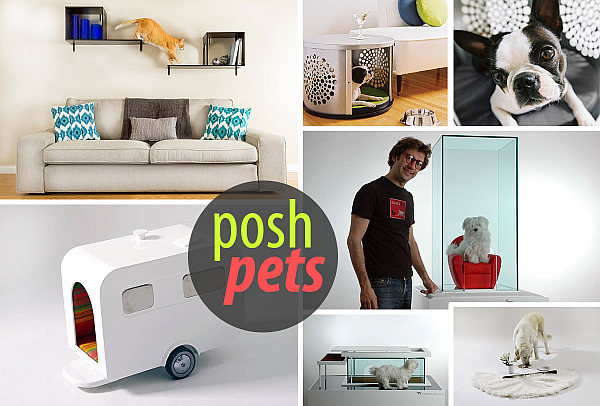 Modern pet furniture accessories for design lovers - Make house pet friendly ...