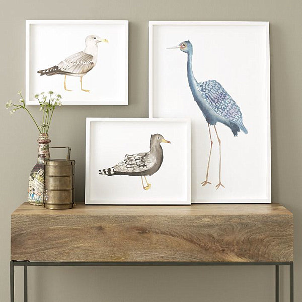 Framed bird wall art