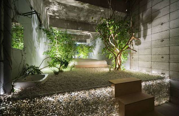 Indoor Natural Lighting For Plants
