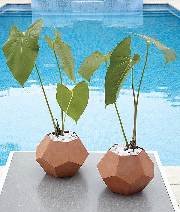 Pentagon planter