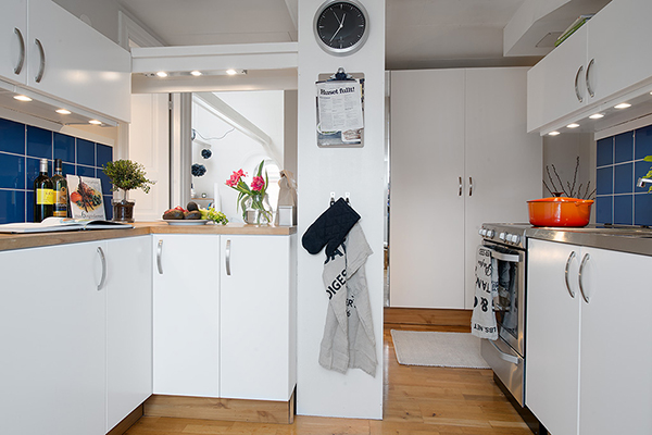 small kitchen in attic apartment