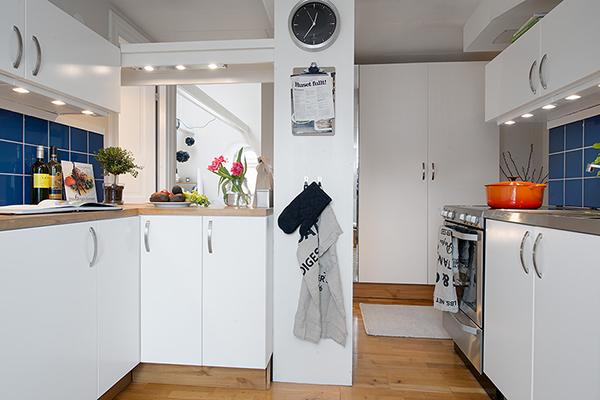 small kitchen in attic apartment