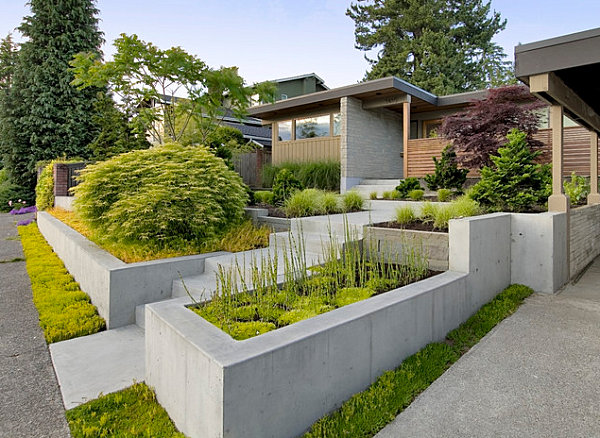 An abundance of textured plant life in a modern yard
