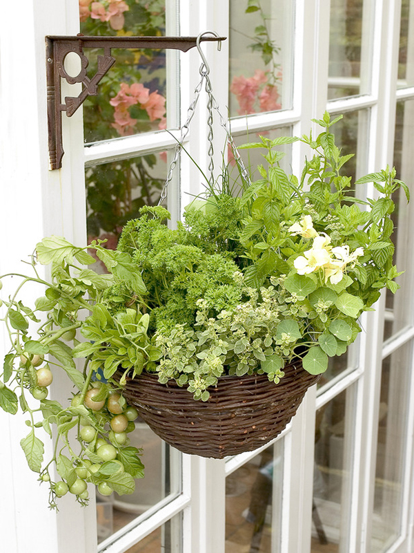 DIY Hanging Basket Vegetable Garden