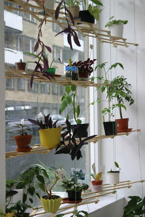 DIY Lattice Window Plant Shelf