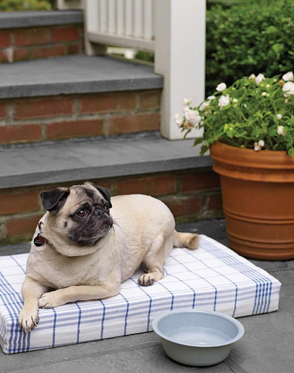 Dish towel dog bed DIY