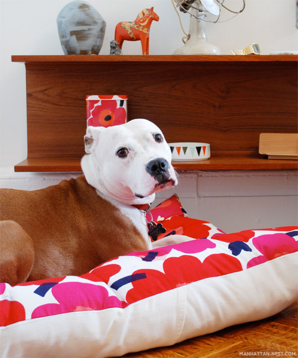 Floral floor pillow dog bed DIY Cool DIY Dog Beds With a Fancy Twist