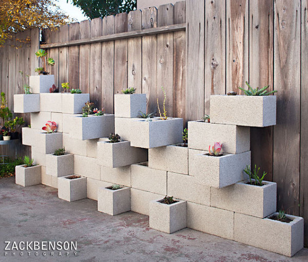 Succulent planter wall