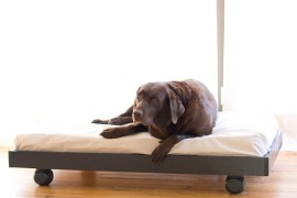 Cool DIY Dog Beds With a Fancy Twist