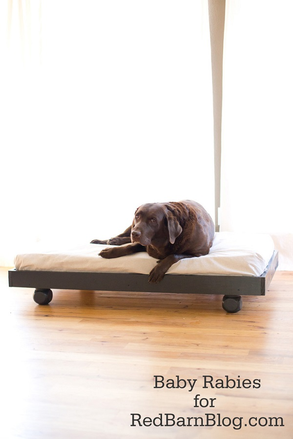 Wooden palette dog bed with wheels