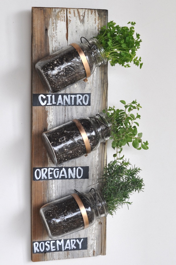 Indoor mason jar herb garden