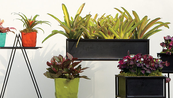 Planters from CB2