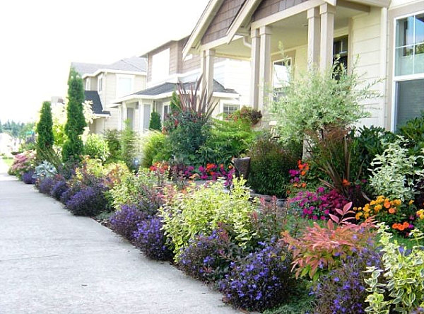 Front yard landscape ideas that make an impression for Plants for landscaping around house