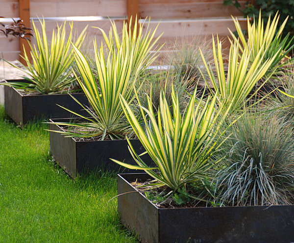 Sleek contemporary planters