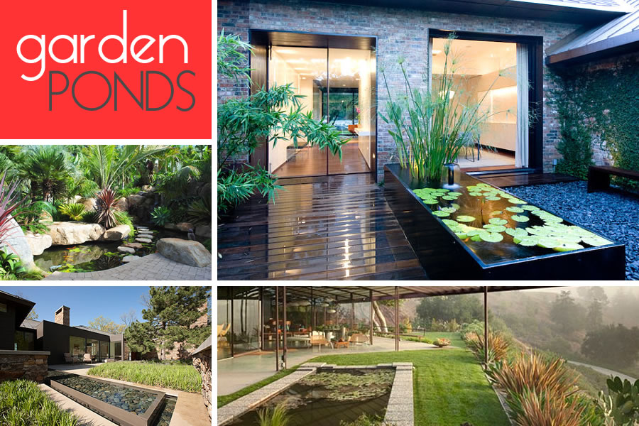 Garden ponds design ideas inspiration for Modern fish pond ideas