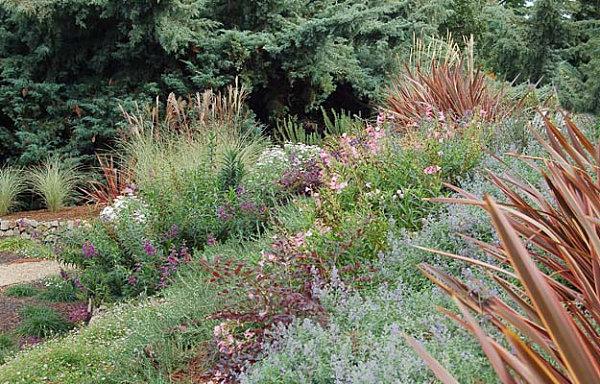 Beautifully arranged plants