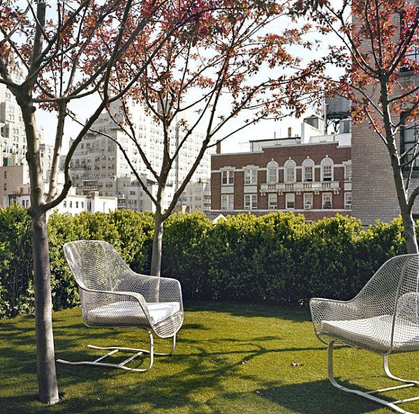 Green space in an urban yard