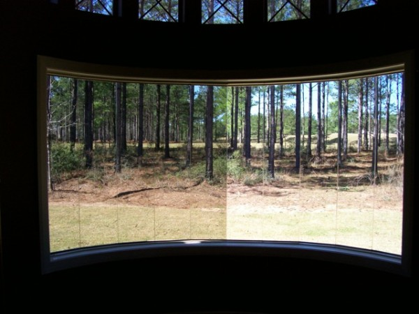 Comparison of backyard view on curved window [right side untreated
