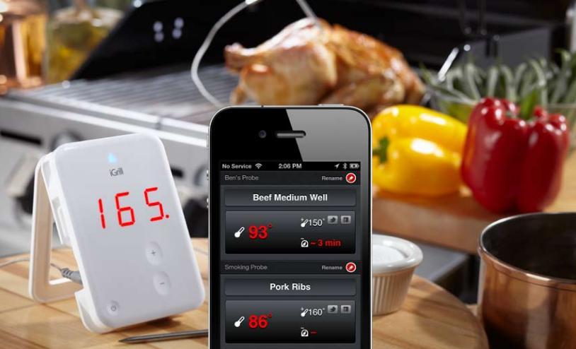 fluke foodpro plus thermometer instructions