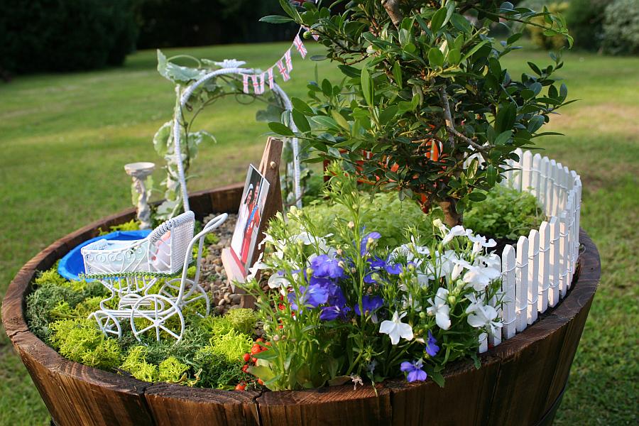 Diy miniature garden celebrates the birth of the royal for Piccoli giardini fai da te