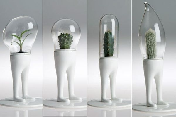 Alien looking Domsai Terrariums by Matteo Cibic!