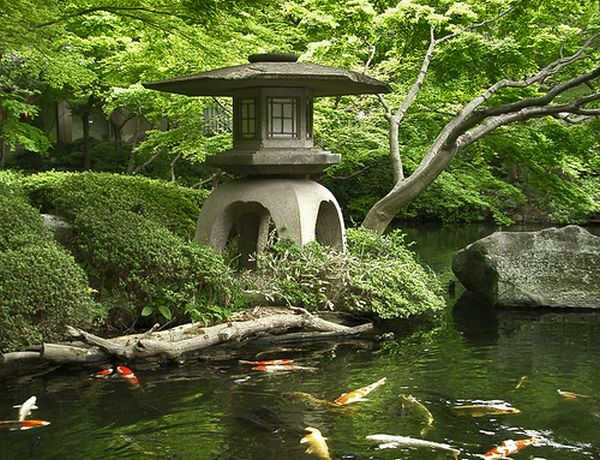 Bold stone lantern along with colorful carp and gold fish in the pond