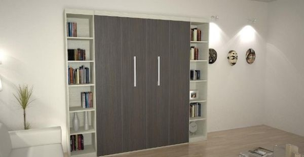 Contemporary bedroom with Murphy Bed flanked by bookshelves