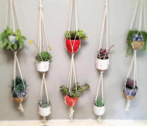 Cool Cotton rope plant hangers adds ample greenery