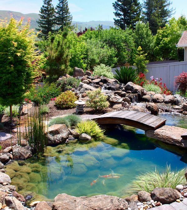 Custom created bridge above the beautiful koi pond decoist for Natural fish pond