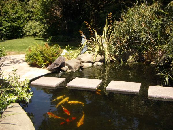 Enjoy relaxing solitude next to the koi pond