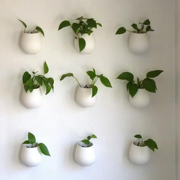 Indoor wall planters are easy to incorporate