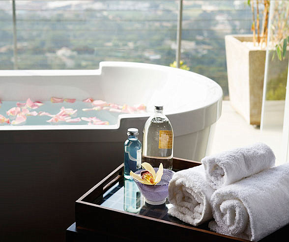 Luxurious bathroom flourishes