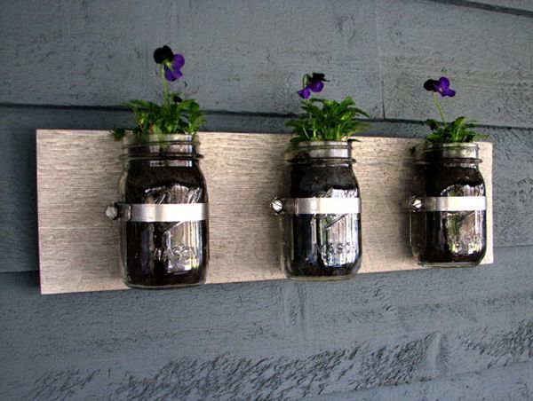 Mason jars are a popular choice as wall planters!