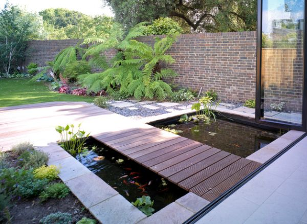 Shallow koi ponds are easier to build and maintain