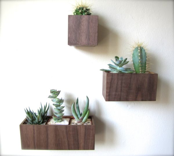 Stylish walnut wood wall planters