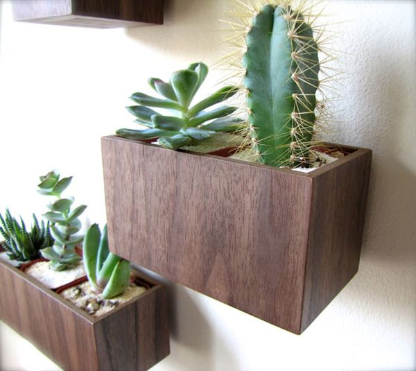 Walnut wood wall planters can also be crafted at home