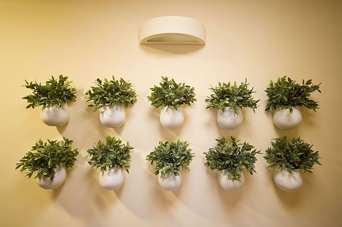 Wall vase arrangements with flowers