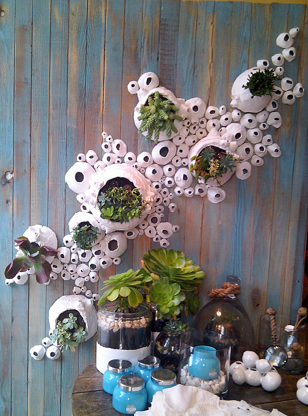 Anthropologie store display featuring plants
