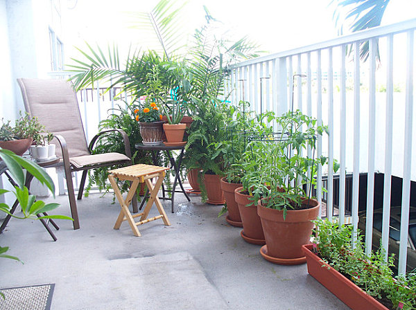 Balcony gardens prove no space is too small for plants for Apartment patio garden design ideas