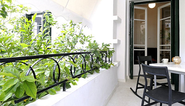 Balcony garden with railing plants