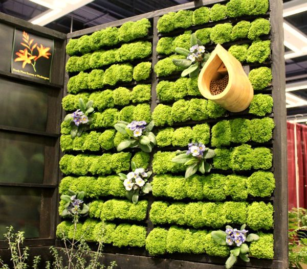 Combine several different wooden pallets to create a grand living wall