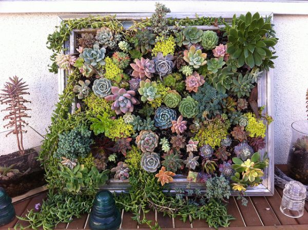 How To Build A Living Wall cool diy green living wall projects for your home