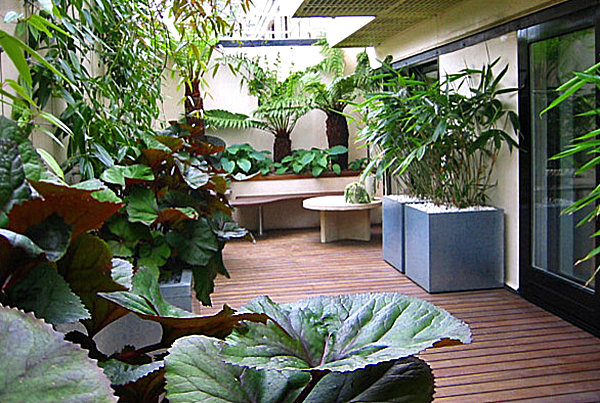 Balcony gardens prove no space is too small for plants for Balcony garden design ideas