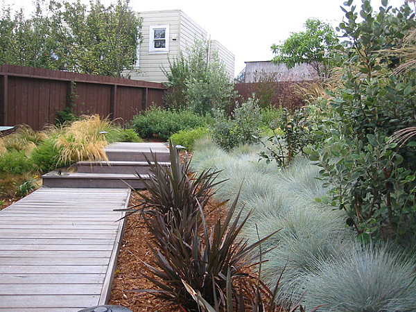 18 modern outdoor spaces for Modern low maintenance plants
