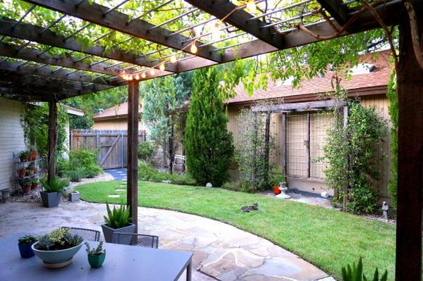Pre-fall cleanup in a backyard space