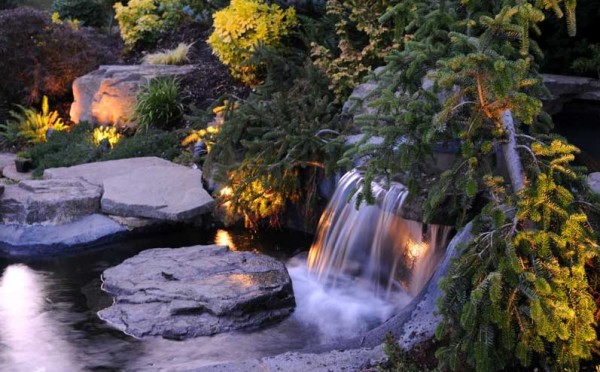 garden waterfall lighting with shrubs