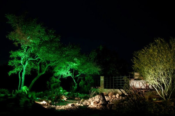 garden with green lighting on trees