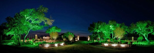 good use of green lighting in a garden